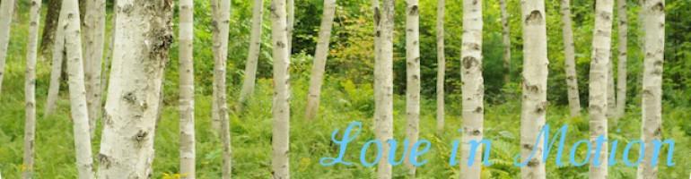 cropped-limtrees.jpg