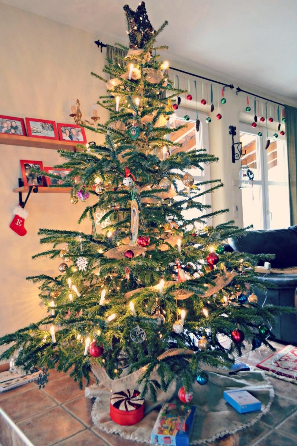 tree2013dayshot