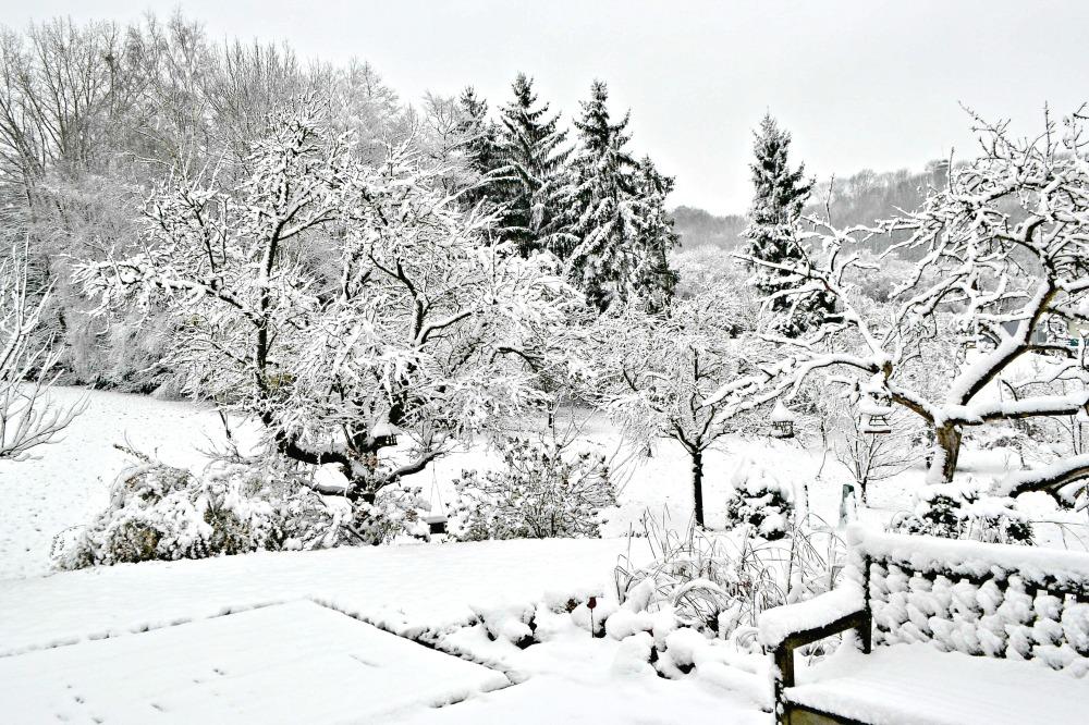 first snow fall 2014a