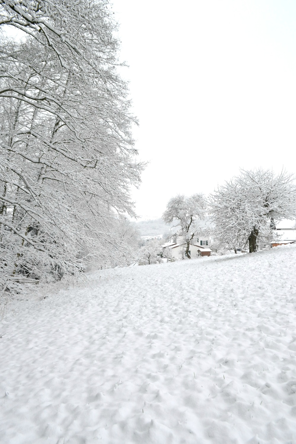 winterwonderland2014